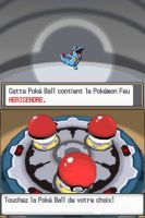 Pokemon ClearCrystal Starters Totodile by Steamland