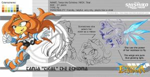 Concept: Tanja the Echidna by Pichu-Chan