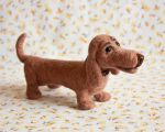 brown dachshund by znmystery
