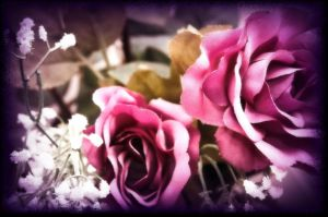 My Fake Roses by Beholdentolove