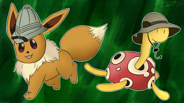An Eevee and Shuckle Adventure by Sylverstone14