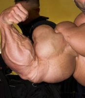 Fascinating Muscle - Bigger by n-o-n-a-m-e