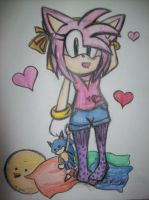 Amy with Sonic Plushie by WhiteXRose96