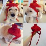 Doggy Beret Crochet Hat Pattern by Lapin-de-Fou