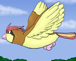 017. Pidgeotto by PokeEvy