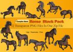 Horse PNG Stock Pack by Roys-Art
