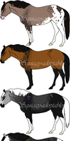 ~Horse Adoptables 2~ by Squiggy-Adoptables