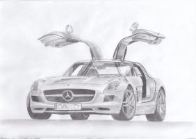 Mercedes-Benz SLS AMG by daharid