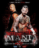 CM PUNK vs STEVE AUSTIN - WM29 by YuppoGFX