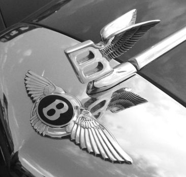 Bentley Wings by moirsypan