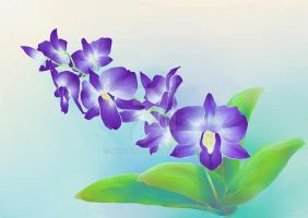 Purple Dendrobium by MondoArt