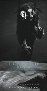 Package - C.B.L. - 1 by resurgere