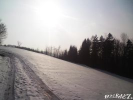A freazing road to nowhere. by Saici