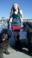 Red and Green with dogs OH MY by saxoncote