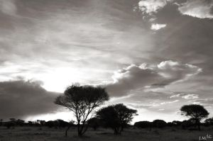 Dramatic Clouds by 4Gemsbok