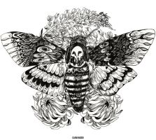 Hawkmoth Tattoo Design (b/w) by ClaraBacou