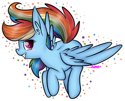 Rainbow Dash  by Shreezie