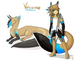 Velci Revamp by Ask-Evin