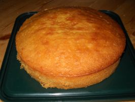 Lemon Drizzle Cake Attempt 2 by Bisected8