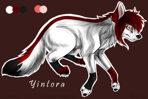 Yintora's Wolf Ref. by WolfWhisperer4Life