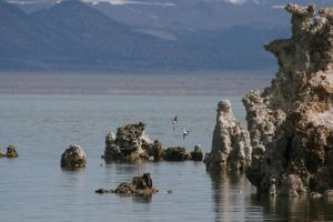 Mono Lake 2 by connorz16