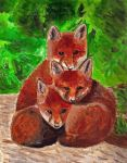 Bundle 'O Foxes by Meorow