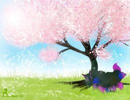 C: Cherry Tree by Snow-Body