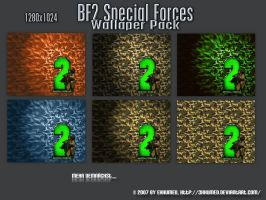 BF2 Special Forces Wall by 3xhumed
