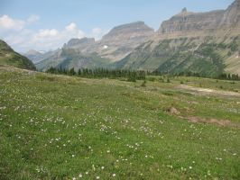 Glacier Park by Mind-Illusi0nZ-Stock