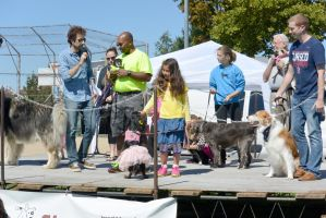 2014 Dog Festival, The Look Alike Contest 15 by Miss-Tbones