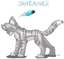 Jayfeather by WindWo1f