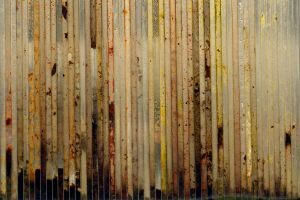 texture stock 395 by redwolf518stock