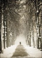 alone in the winter II by dincha