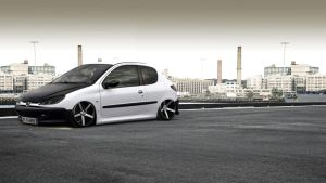 Peugeot 206 street tuning by alemaoVT