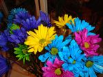 My Flowers Dyed by itsayskeds