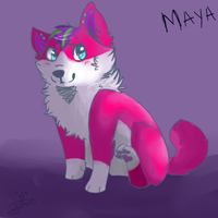 RQ:. Puppy Maya by Alu12