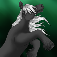Free Sketches - Willow by Tailic