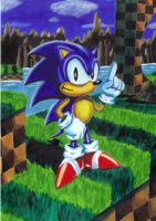 Classic Sonic by leeuf