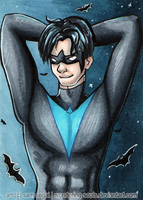 Nightwing [Day 6] by wondering-souls