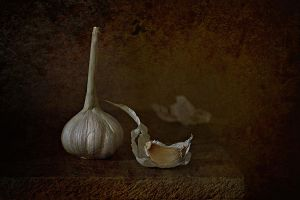 Etude with garlic by An-gora