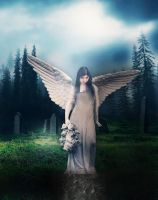 Concrete Angel by willowdiamond