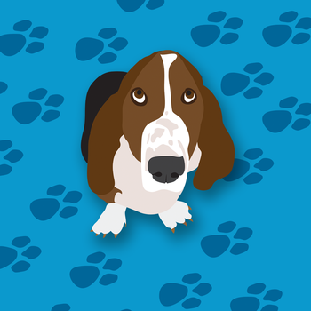 Wilbur the Basset by robyriker