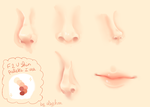 Eyes, Nose, Lips and a wedding dress by Elsychan