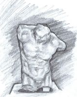 Torso Study by PoorGent