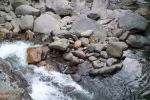 River at Chimney Tops by Mershell