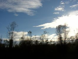 Dark Land and Light Sky by DreamsWithinMe