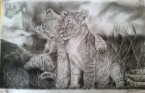 Drawing: Lion Cubs by AiSolare