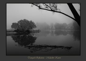 Tranquil Reflections B-W by FireflyPhotosAust