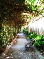 Tunnel Garden by bartoberto