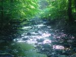 Unseen River by this-side-upsid-down